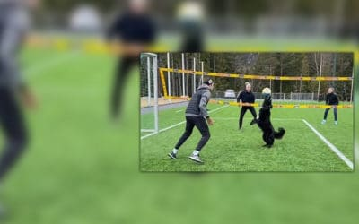 Volley Vids We Like: Volley Dog